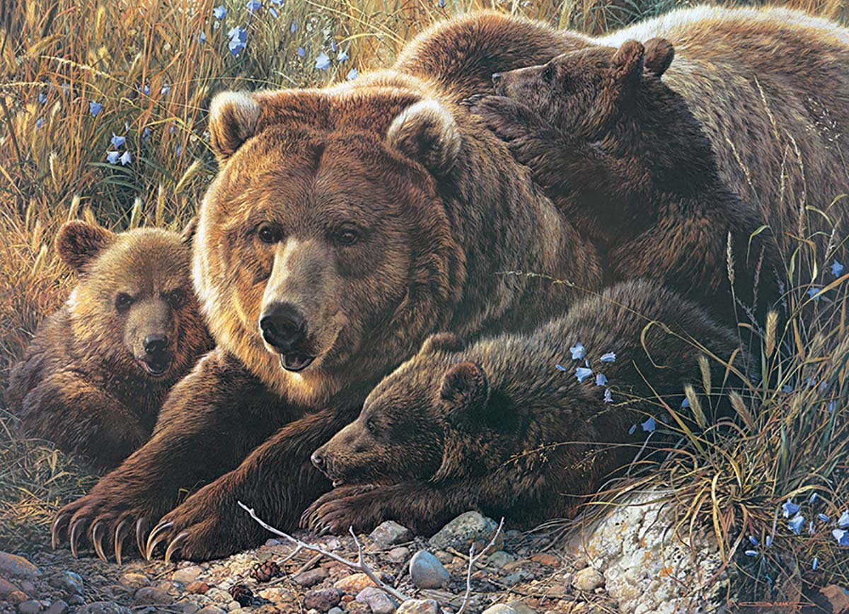 Grizzly Family Bears Jigsaw Puzzle
