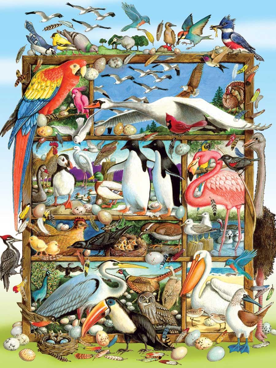 Birds of the World Birds Jigsaw Puzzle
