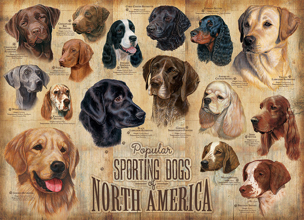 Sporting Dogs Animals Jigsaw Puzzle