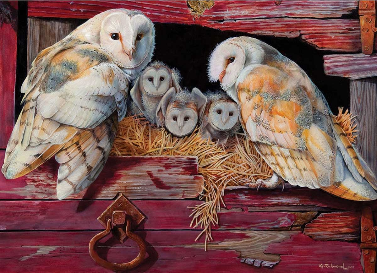 Barn Owls Birds Jigsaw Puzzle
