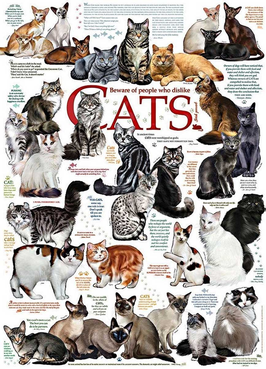 Cat Quotes Cats Jigsaw Puzzle