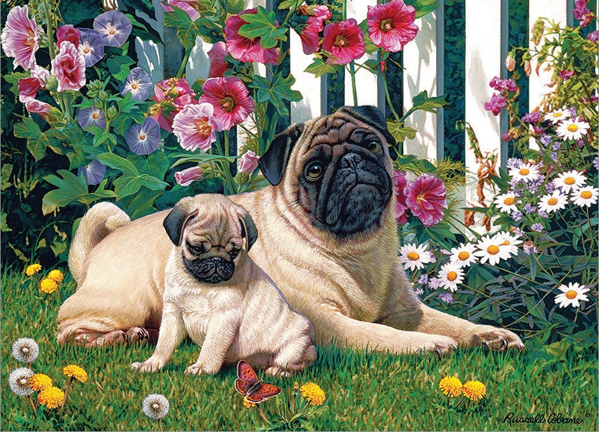 Pug Family Dogs Jigsaw Puzzle