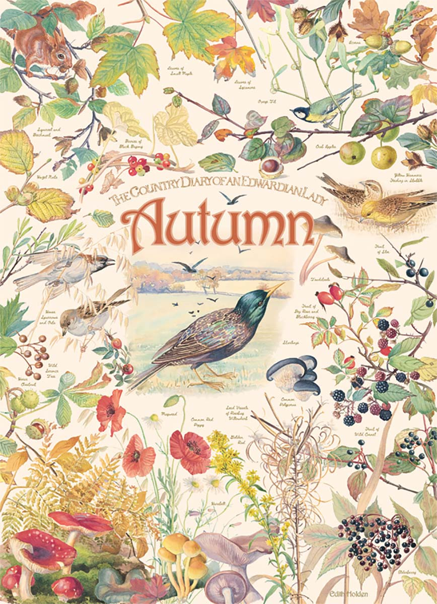 Country Diary: Autumn Flowers Jigsaw Puzzle