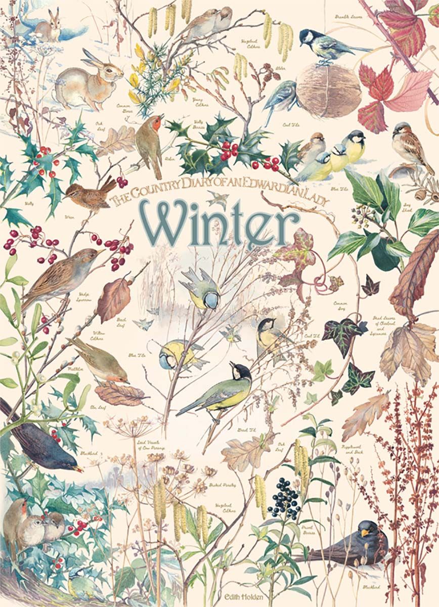 Country Diary: Winter Birds Jigsaw Puzzle