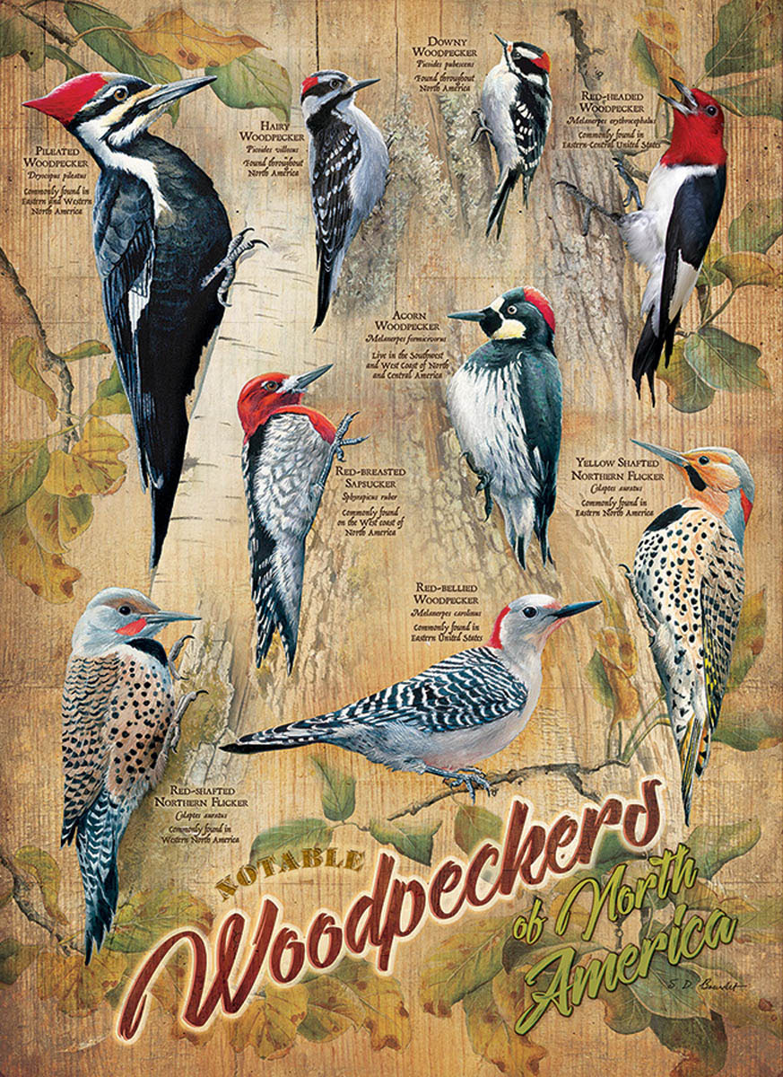 Notable Woodpeckers Birds Jigsaw Puzzle