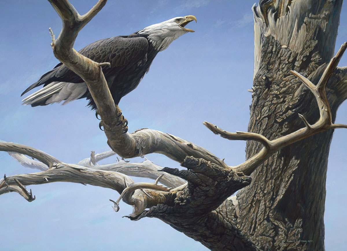 Call of the Wild Birds Jigsaw Puzzle