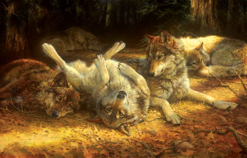 Social Viewpoints Wolves Jigsaw Puzzle
