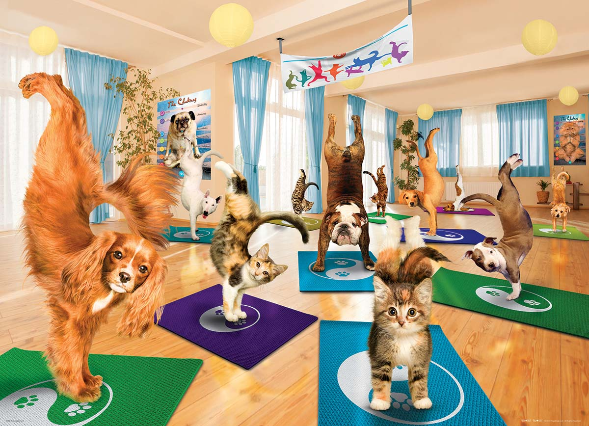 Yoga Studio Cats Jigsaw Puzzle