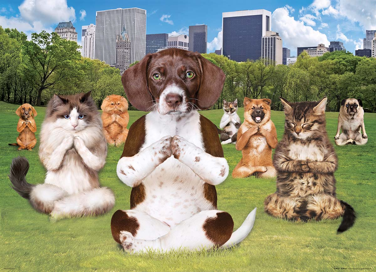 Yoga Park - Scratch and Dent Cats Jigsaw Puzzle