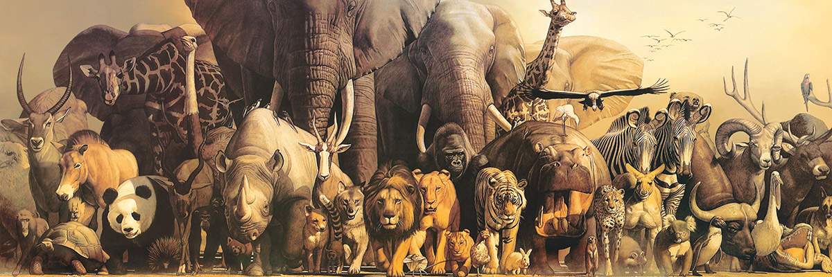 Noah's Ark - Scratch and Dent Jungle Animals Jigsaw Puzzle