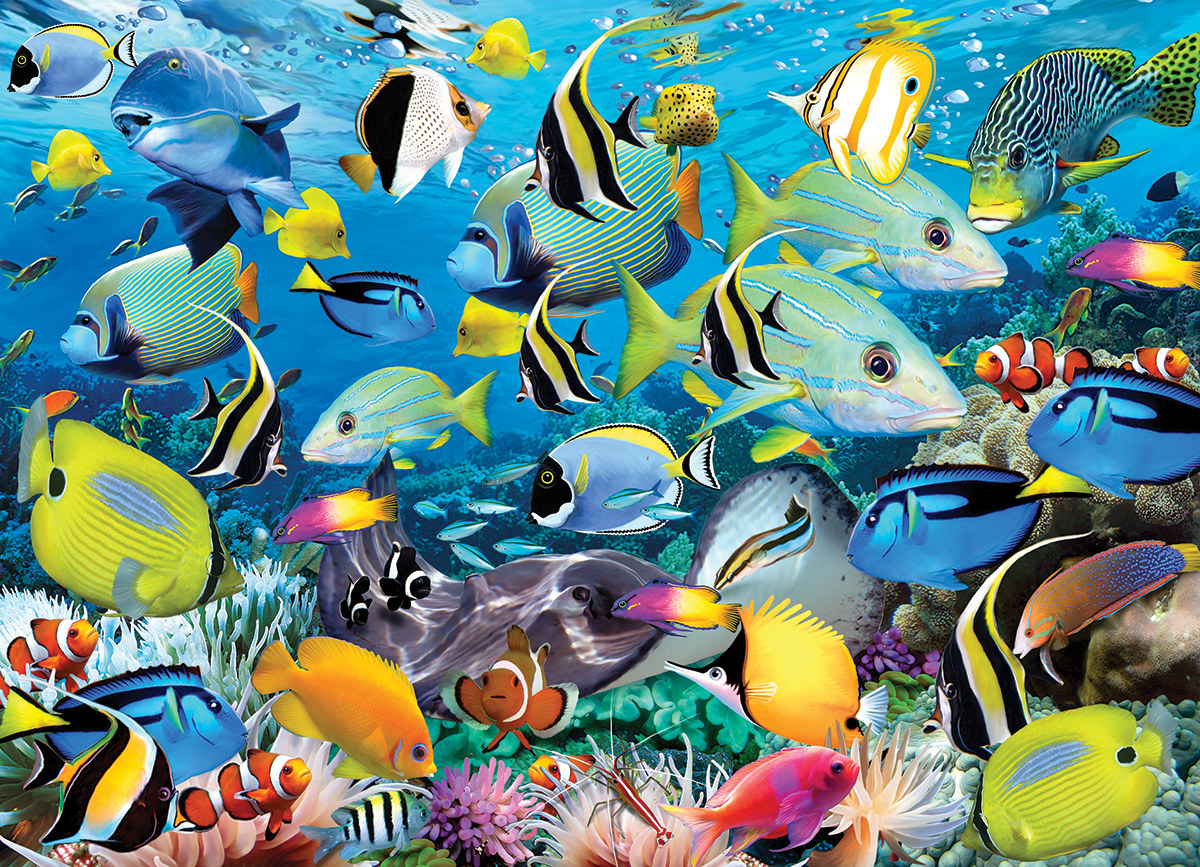 Ocean Colors - Scratch and Dent Under The Sea Jigsaw Puzzle
