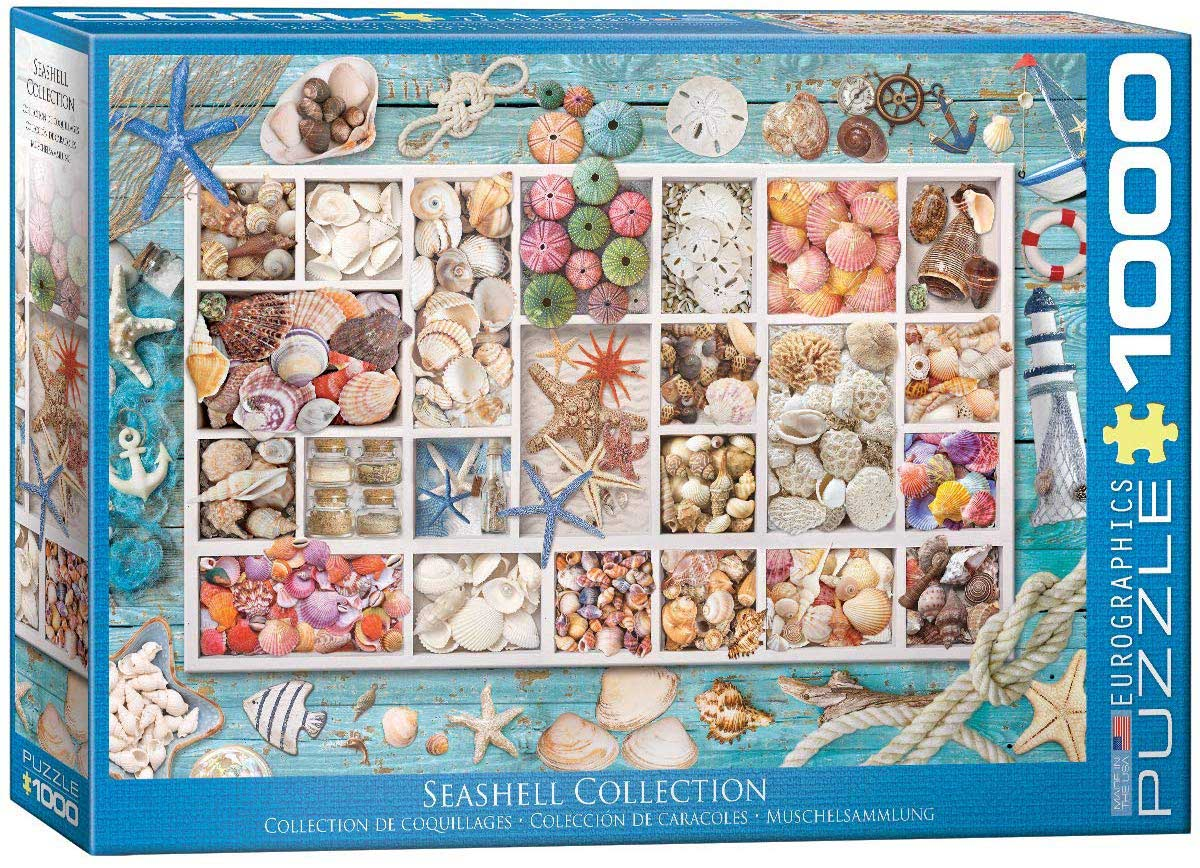 Laura's Seashell Collection Under The Sea Jigsaw Puzzle
