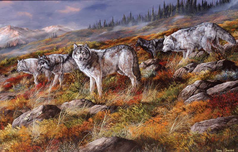 Wolves on the Move Jigsaw Puzzle