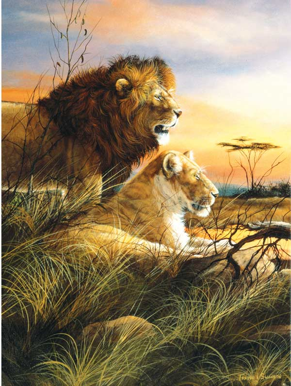 Lions at the Watering Hole Jungle Animals Jigsaw Puzzle