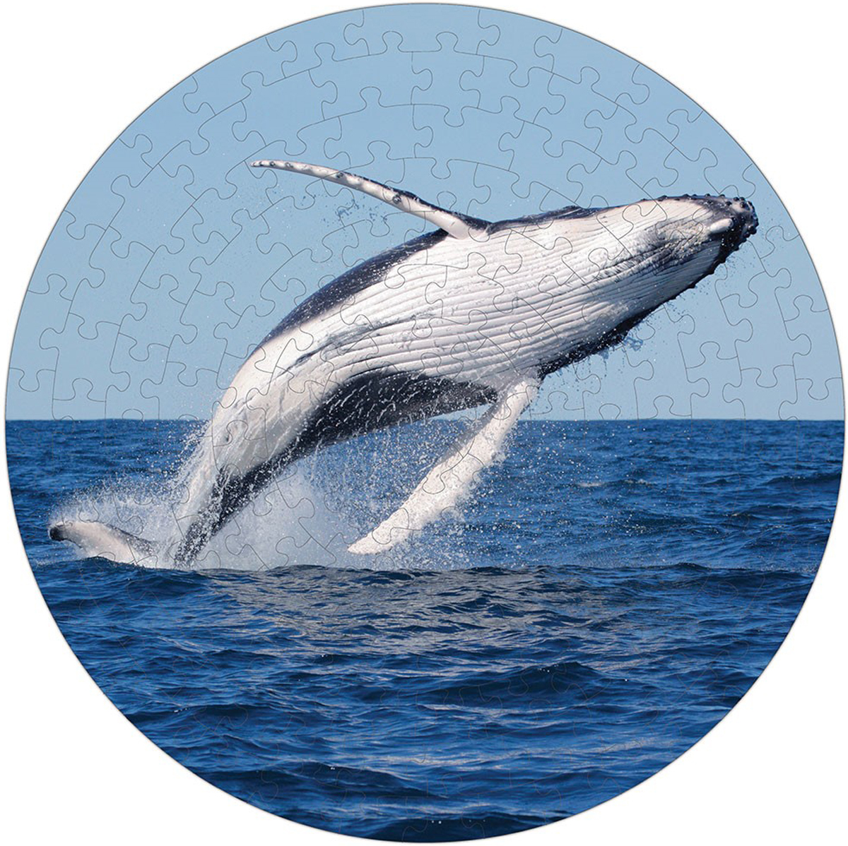 Humpback Whale Puzzle A-Round Animals Jigsaw Puzzle