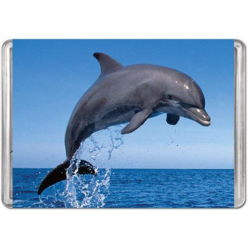 Bottlenose Dolphin (Mini) Photography Jigsaw Puzzle