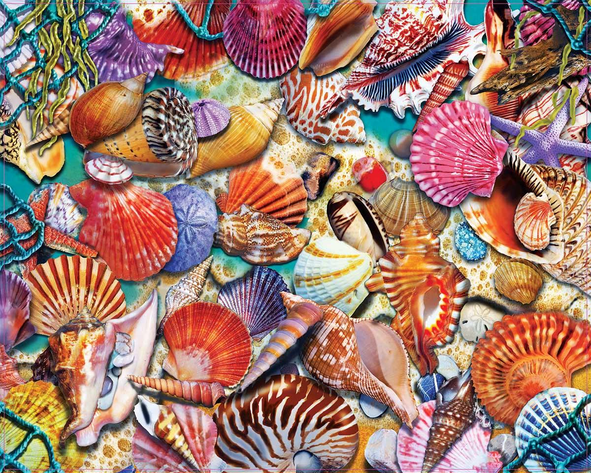 Coastal Shells Beach Jigsaw Puzzle