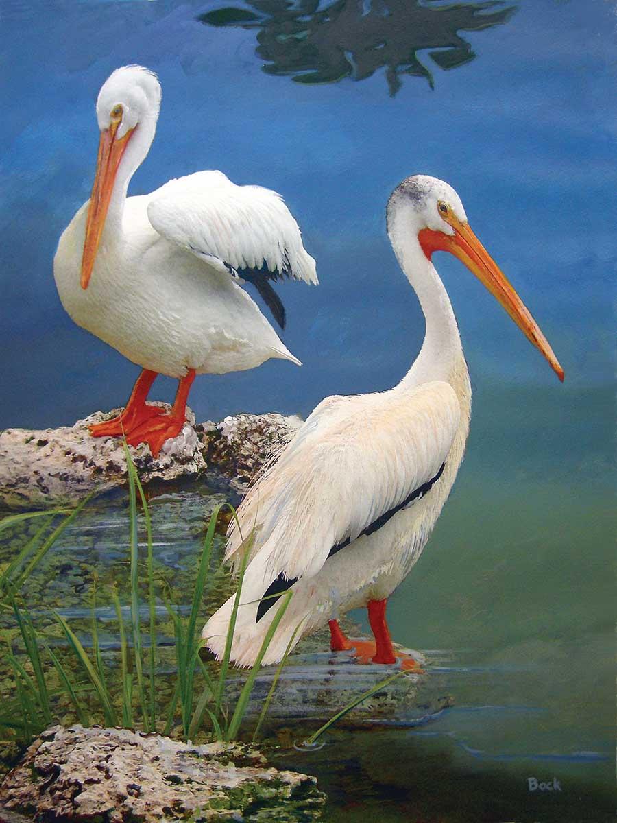 White Pelicans Beach Jigsaw Puzzle