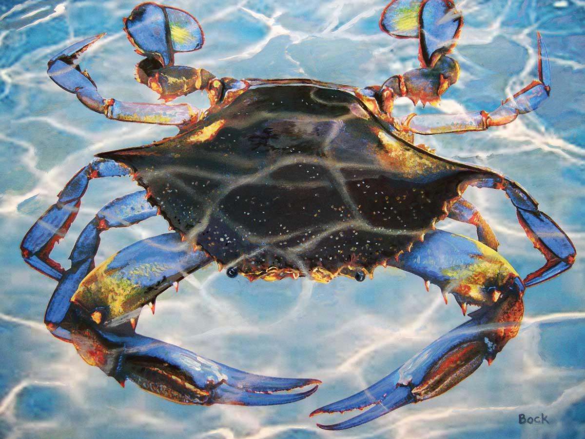 Blue Crab Bay Beach Jigsaw Puzzle