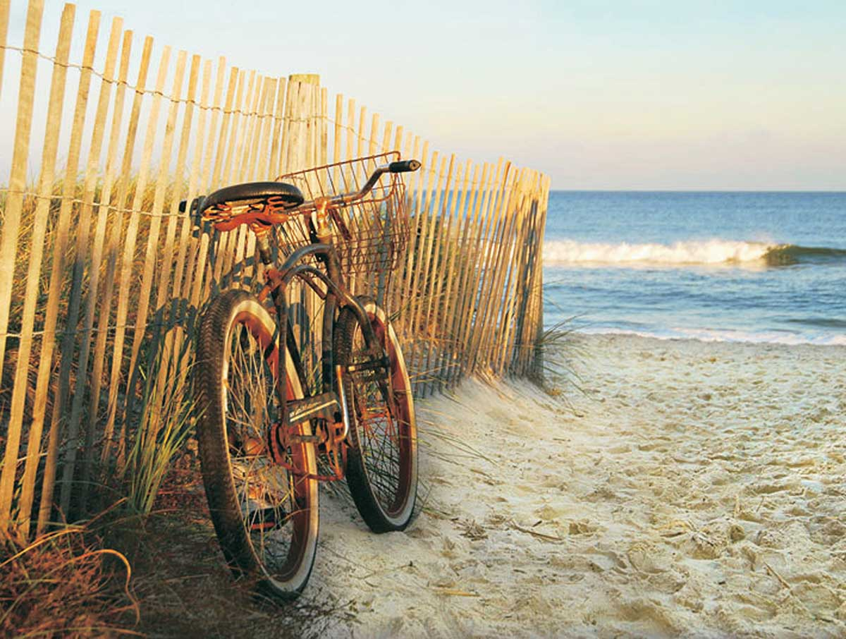 Beach Cruising Beach Jigsaw Puzzle