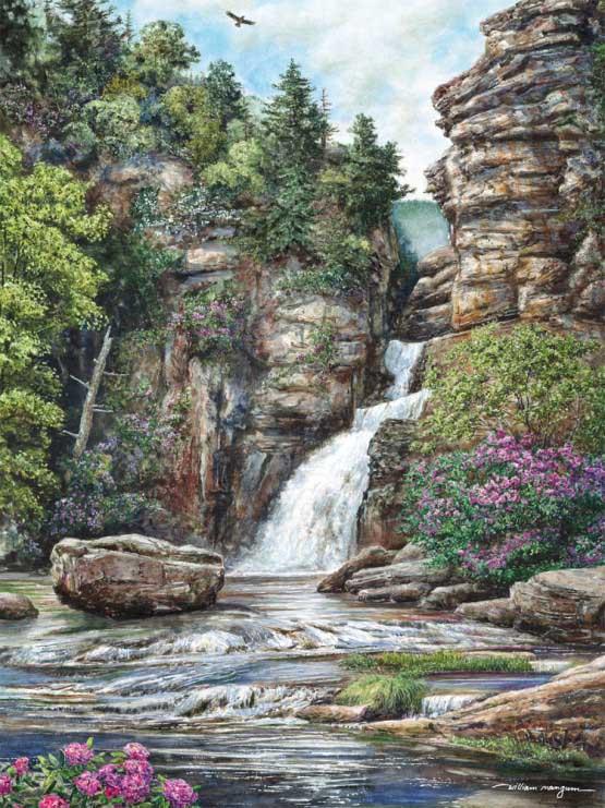 Linville Falls Waterfalls Jigsaw Puzzle