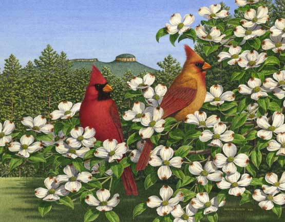 Carolina Calling Birds Jigsaw Puzzle