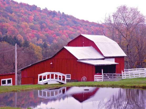 Red Barn Reflections Farm Jigsaw Puzzle