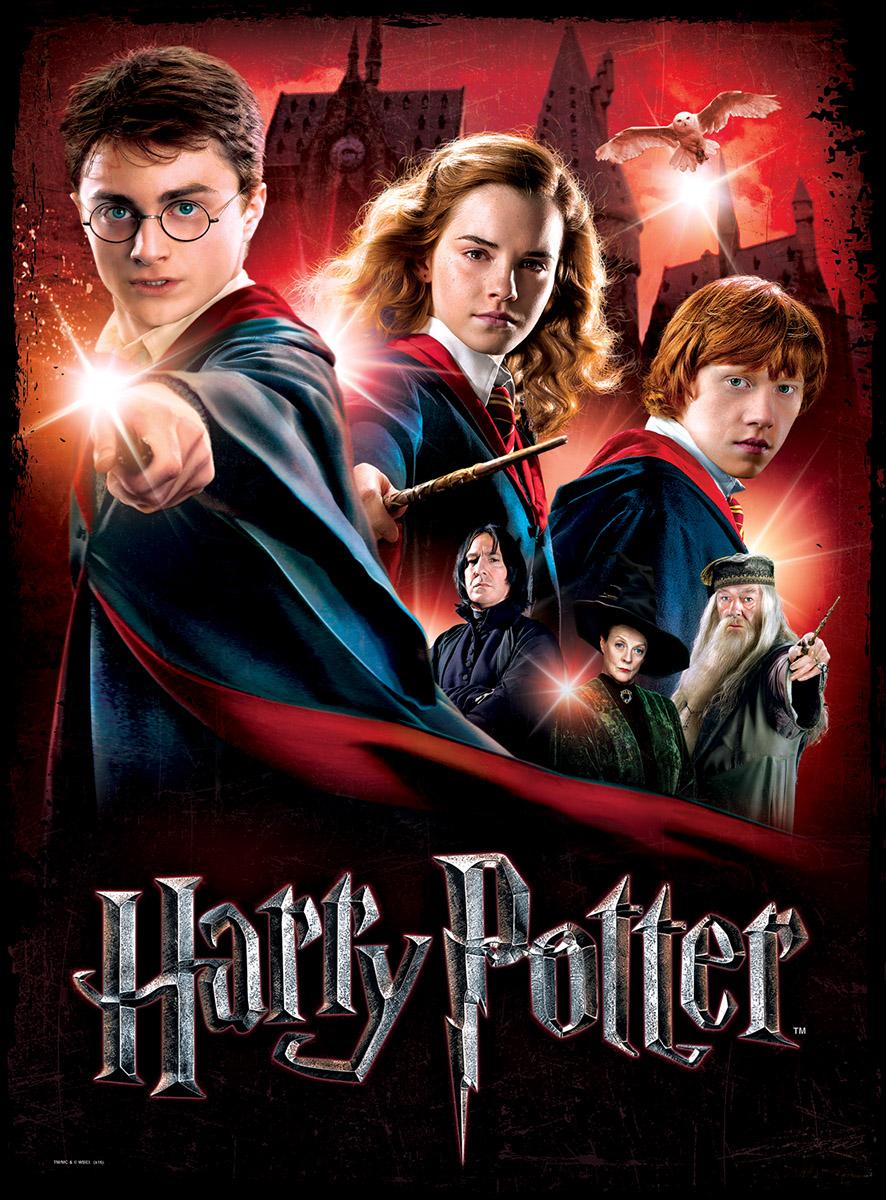 Hogwarts School Jigsaw Puzzle Puzzlewarehouse Com