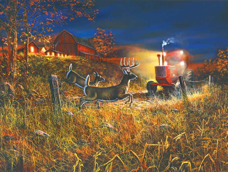 Field of Dreams Farm Jigsaw Puzzle