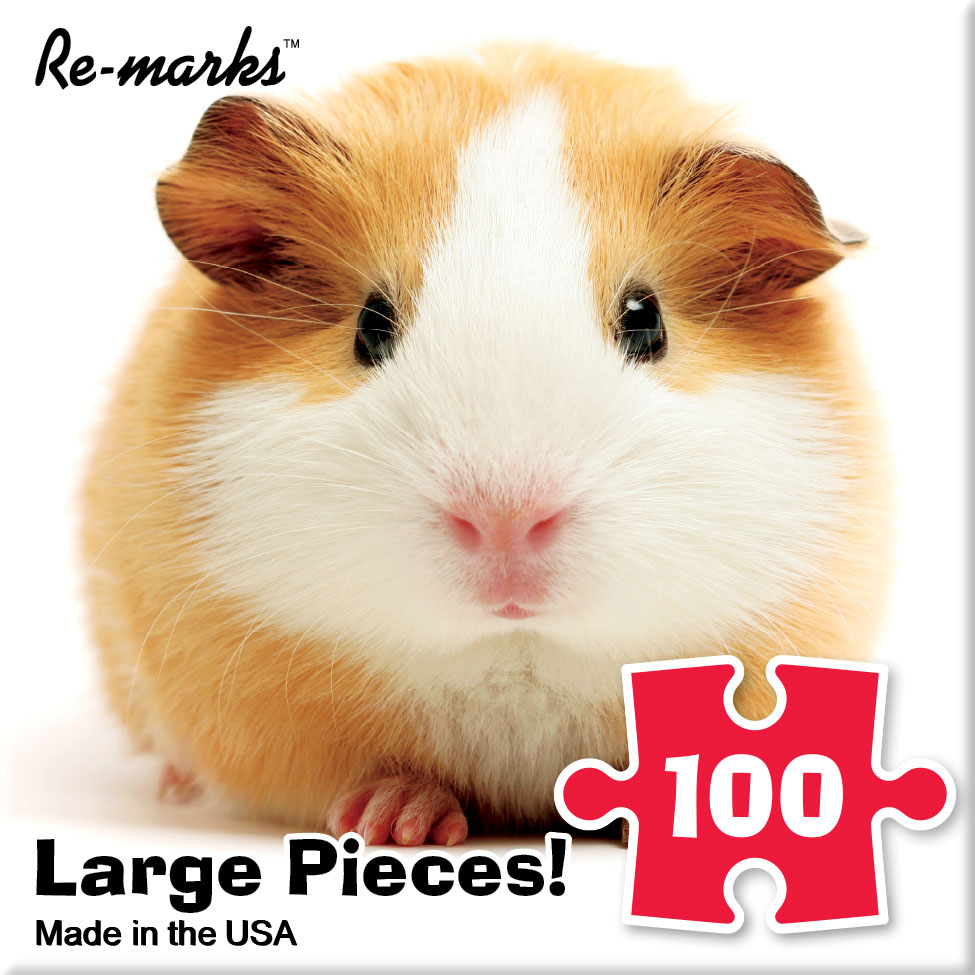 Minipig Animals Jigsaw Puzzle