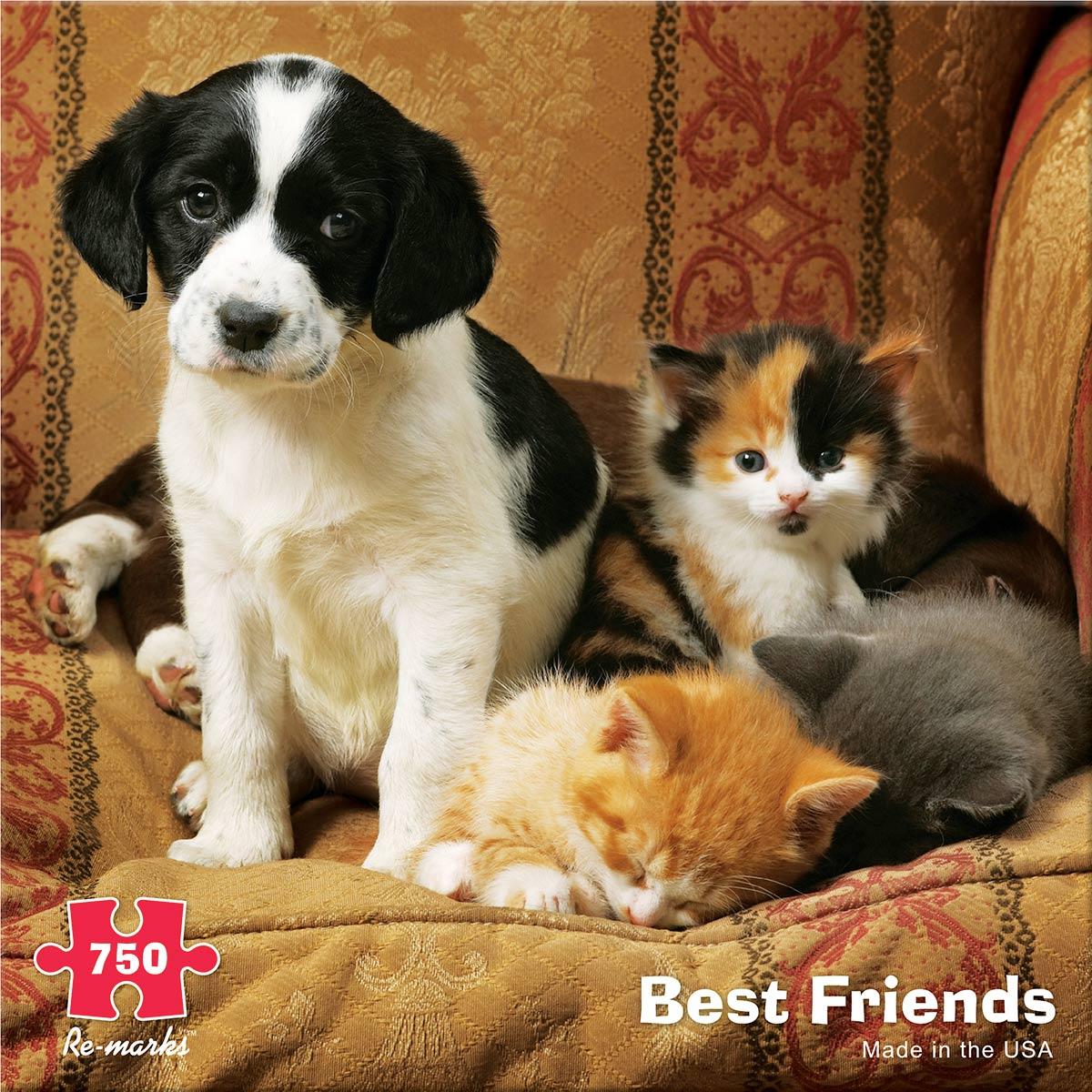Best Friends Cats Jigsaw Puzzle