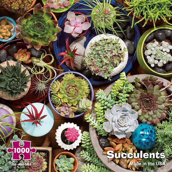 Succulents Jigsaw Puzzle
