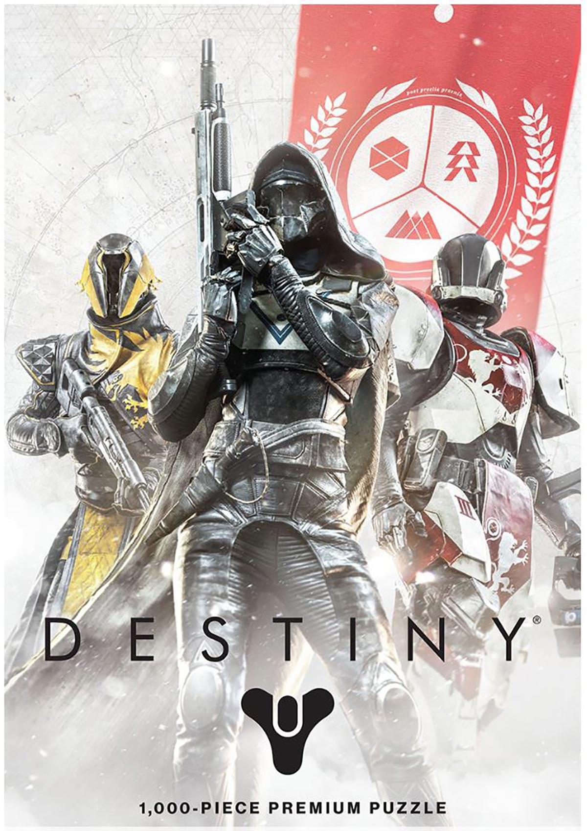 Destiny Guardian Fireteam Video Game