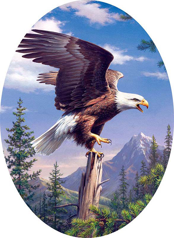 American Eagle Shaped Puzzle Puzzlewarehouse Com