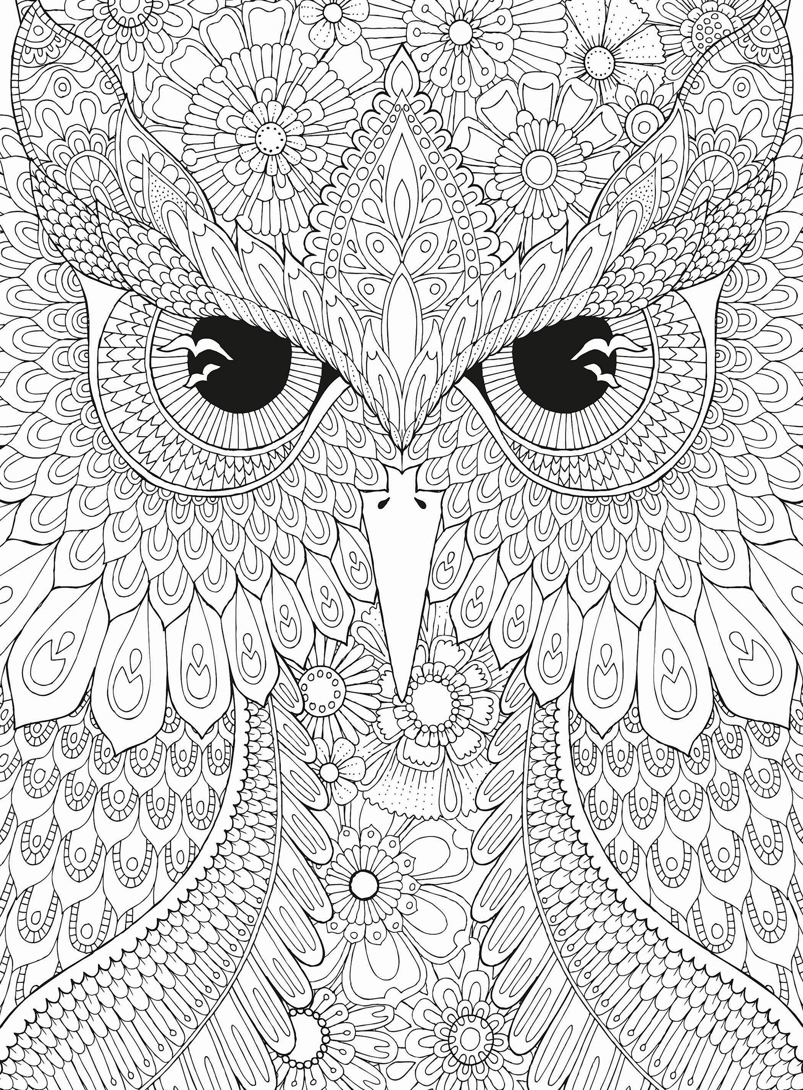 Owl Jigsaw Puzzle Puzzlewarehouse Com