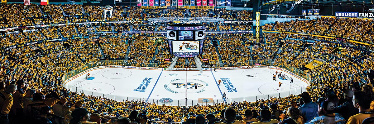 Nashville Predators Sports Jigsaw Puzzle