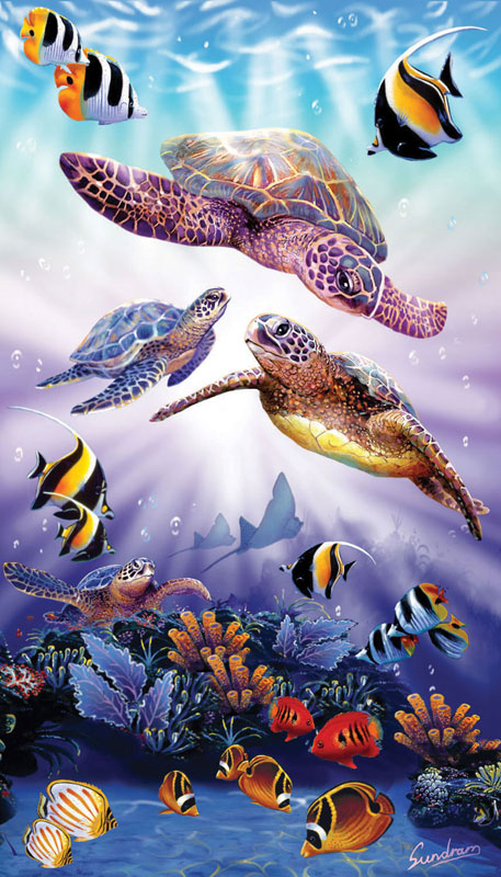 Turtle Play Jigsaw Puzzle Puzzlewarehouse Com