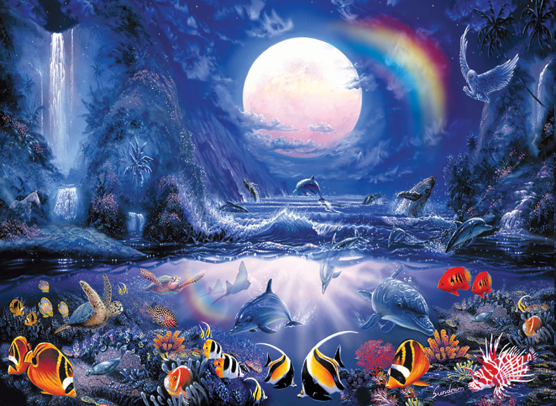 Moonlight Splash Marine Life Jigsaw Puzzle