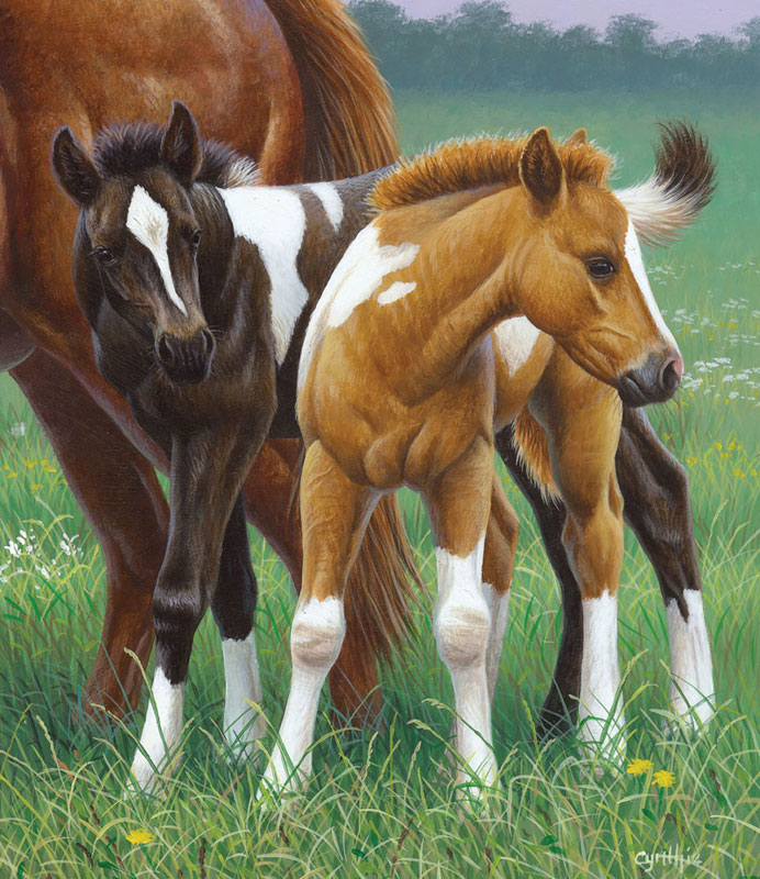 Two Foals Horses Jigsaw Puzzle