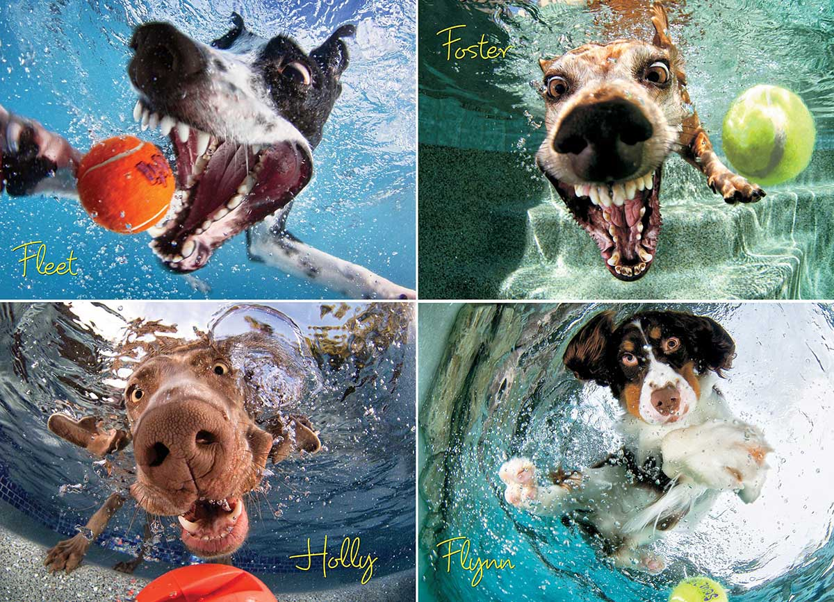 Underwater Dogs:  Splash - Scratch and Dent Dogs Jigsaw Puzzle