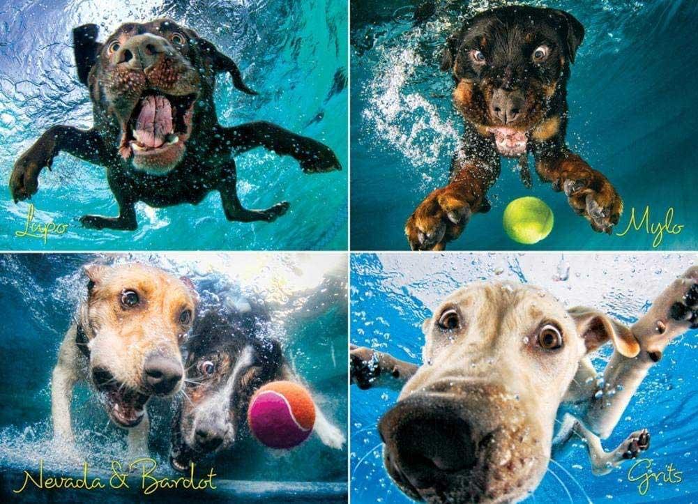 Underwater Dogs:  Splash Dogs Jigsaw Puzzle