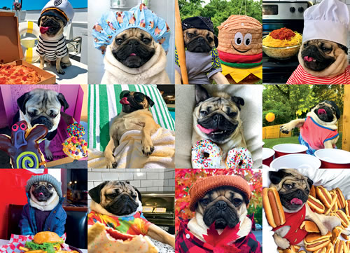 Doug the Pug: Pug Life Dogs Jigsaw Puzzle