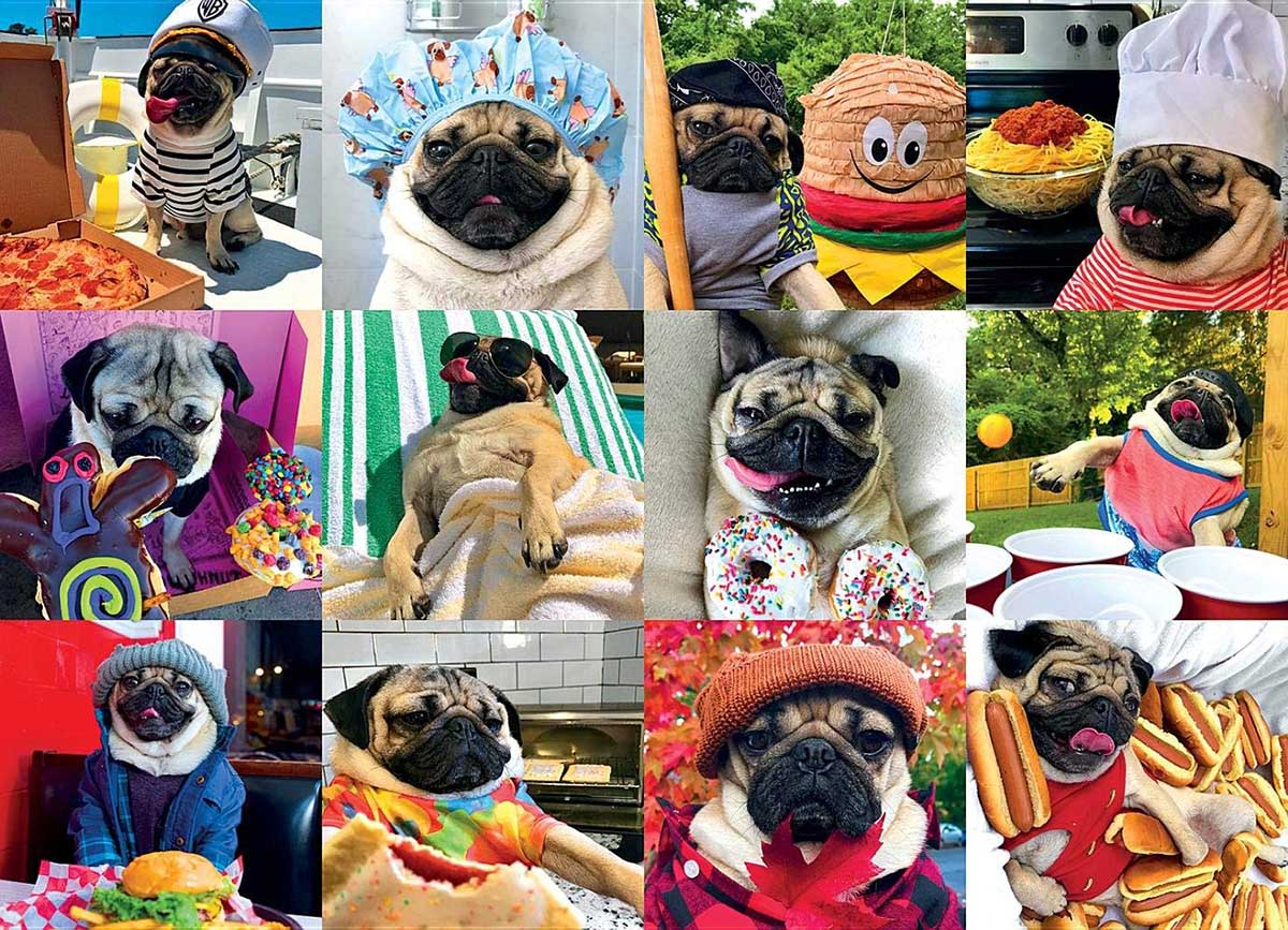Doug the Pug: Pug Life - Scratch and Dent Dogs Jigsaw Puzzle
