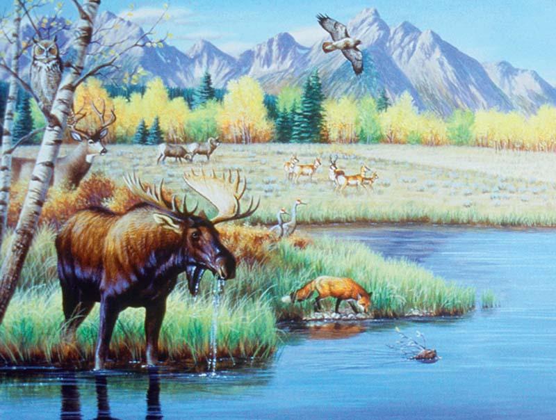 Waterhole Gathering Wildlife Jigsaw Puzzle