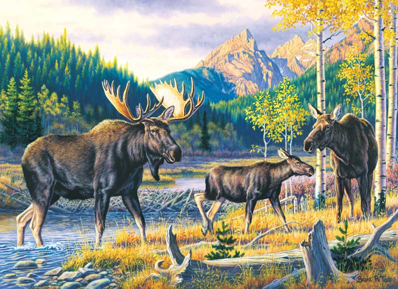 Wildlife Masters - Family Pass Wildlife Jigsaw Puzzle