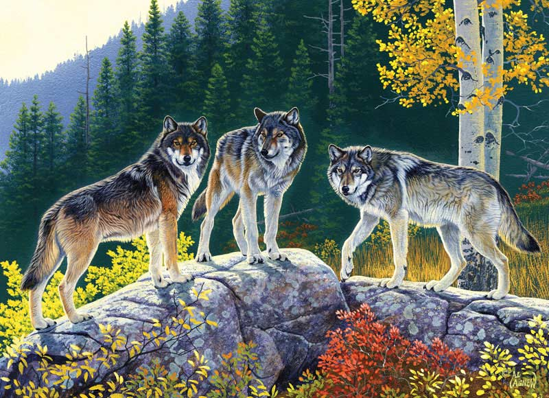 Wildlife Masters - Fall Wolves Wolves Jigsaw Puzzle