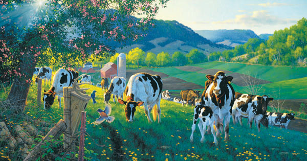 Meadowland Cows Jigsaw Puzzle