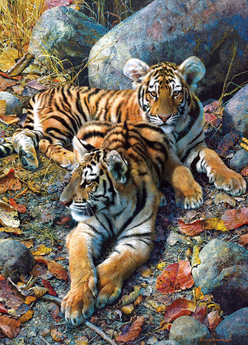 Bengal Tiger Animal Planet Jigsaw Puzzle