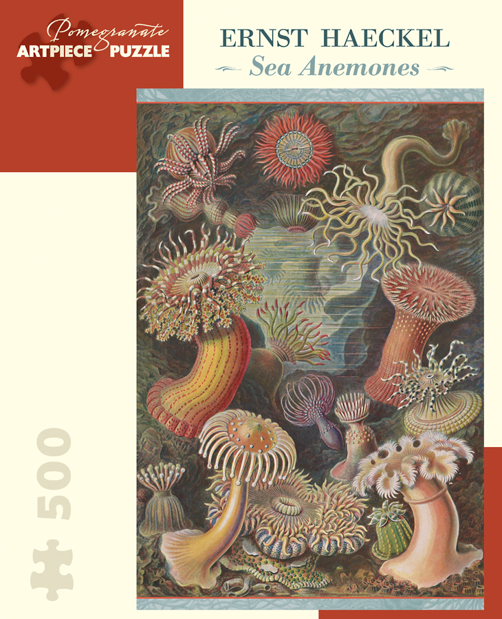 Sea Anemones Under The Sea Jigsaw Puzzle