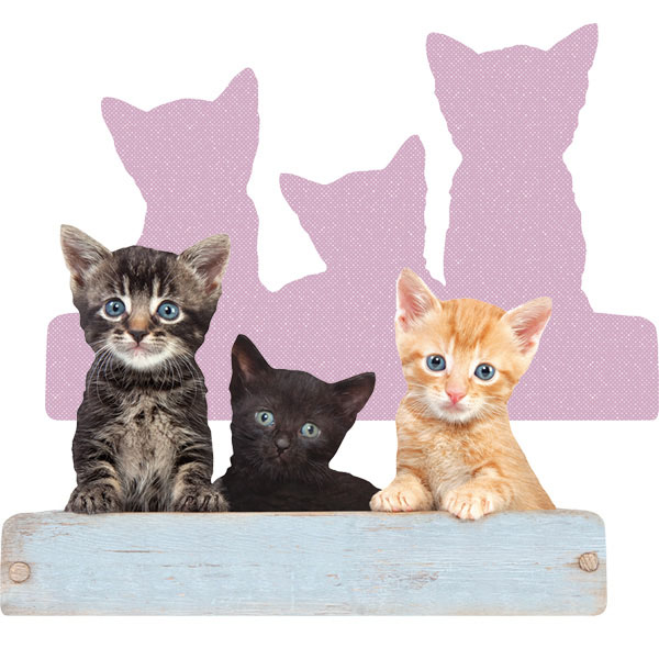 Three Kittens Cats Shaped Puzzle